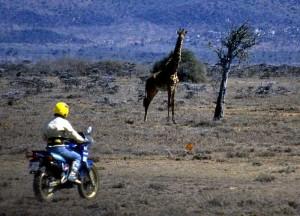 Moto Safari Kenia