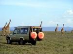 safari-Masai-Mara