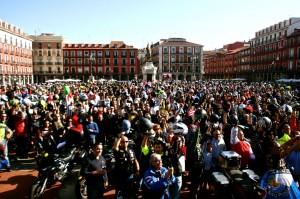 Manifesacion Pinguions Valladolid