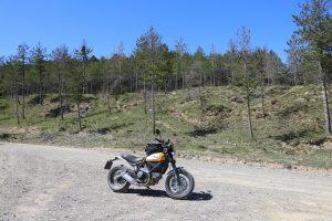 Ducati Scrambler 11