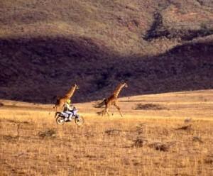 Reserva Natural Masai Mara Kenia
