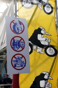 Pinguinos-2010-3-027