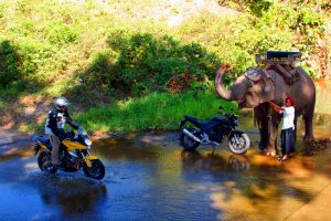 rio-tailandia-elefante