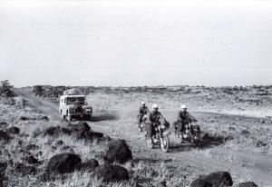 Operacio Impala per la savana baixa (1)
