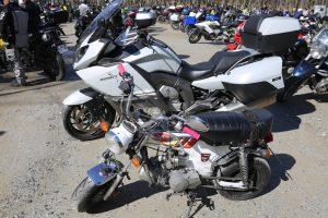 penitentes motos